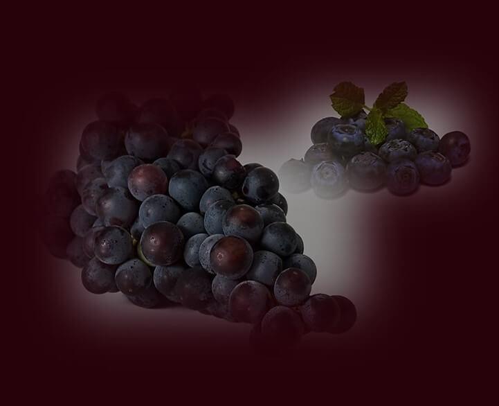 דיאטת אנטי אייג'ינג - ענבים שחורים ואוכמניות. תמונה של ענבים שחורים ואוכמניות.
