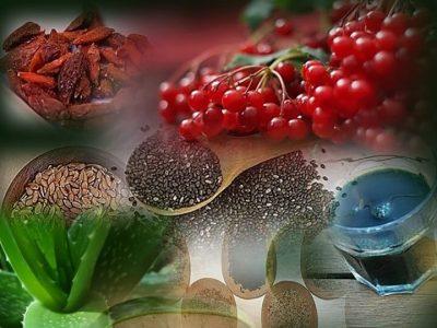 דיאטת אנטי אייג'ינג - סופר פוד מזונות על - תמונה של ג'וגי ברי, זרעי ציה, זרעי פישתן ואלוורה.